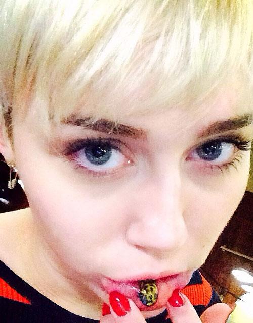 Miley se tatuó un lindo gatito